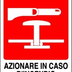 CARTELLI AZIONARE IN CASO DI INCENDIO 250X310